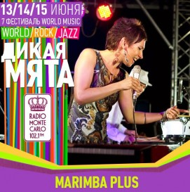 dm2014-marimba