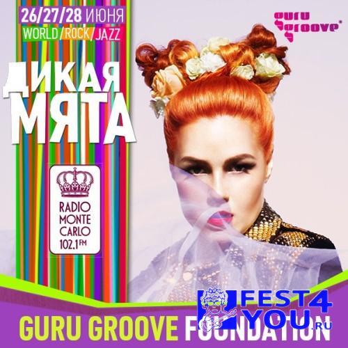 dm2015_guru-groove
