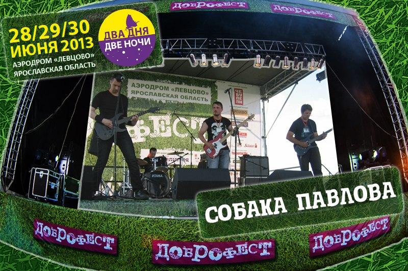 dobrofest2013-dog