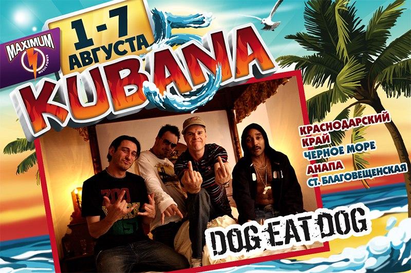 kubana2013-dog